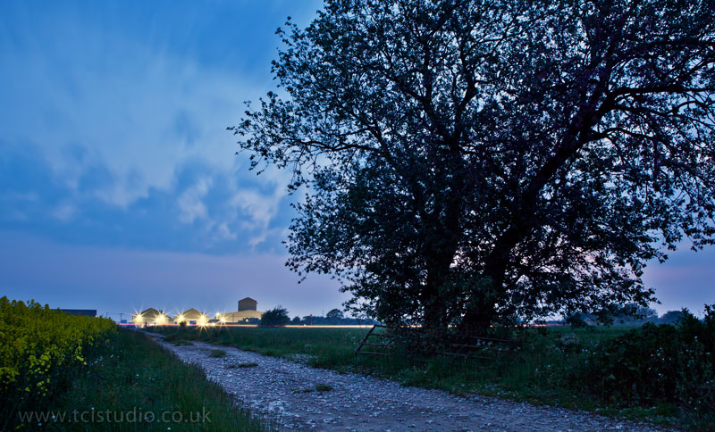 Gate and tree after dark, Hadstock Airfield, Essex