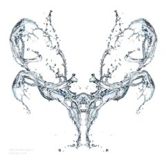 Water splash skull, photographing liquid freeform