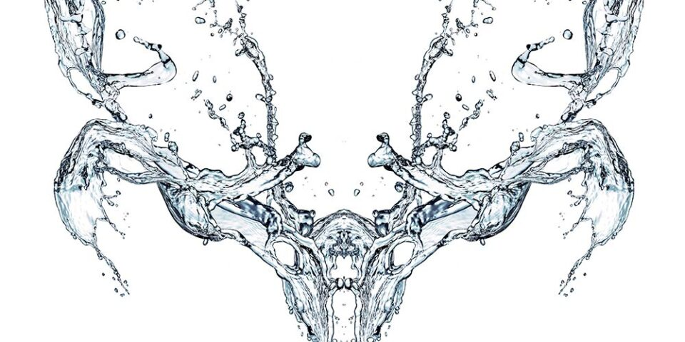 Water splash skull, photographing liquid freeform